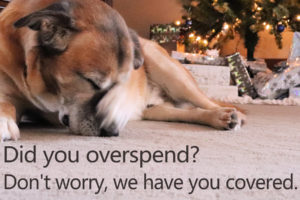 Image of an embarrassed dog by presents under a tree.